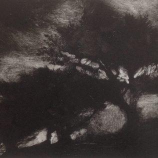 Mathry Drypoint/monotype 15 x 10cm